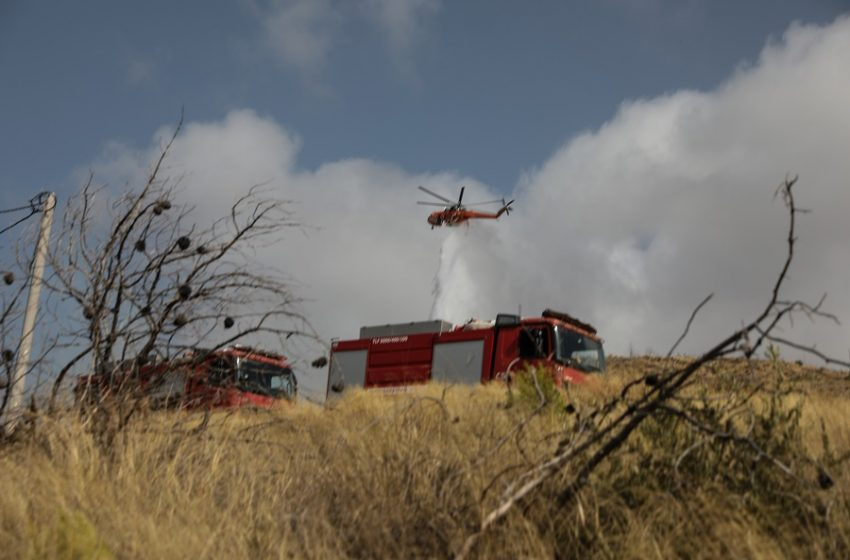 Κορωπί: Πυρκαγιά στην Αγία Μαρίνα