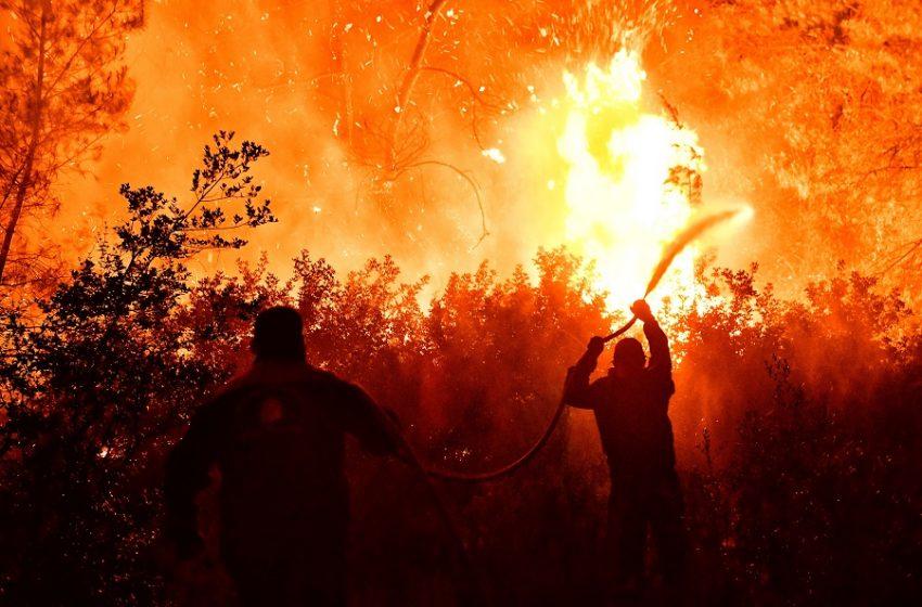 Έγκλημα στον Σχίνο -Χαρδαλιάς: Θα είναι μια δύσκολη νύχτα-Από καύση υπολειμμάτων σε ελαιώνα ξεκίνησε η πυρκαγιά (vid-pics)