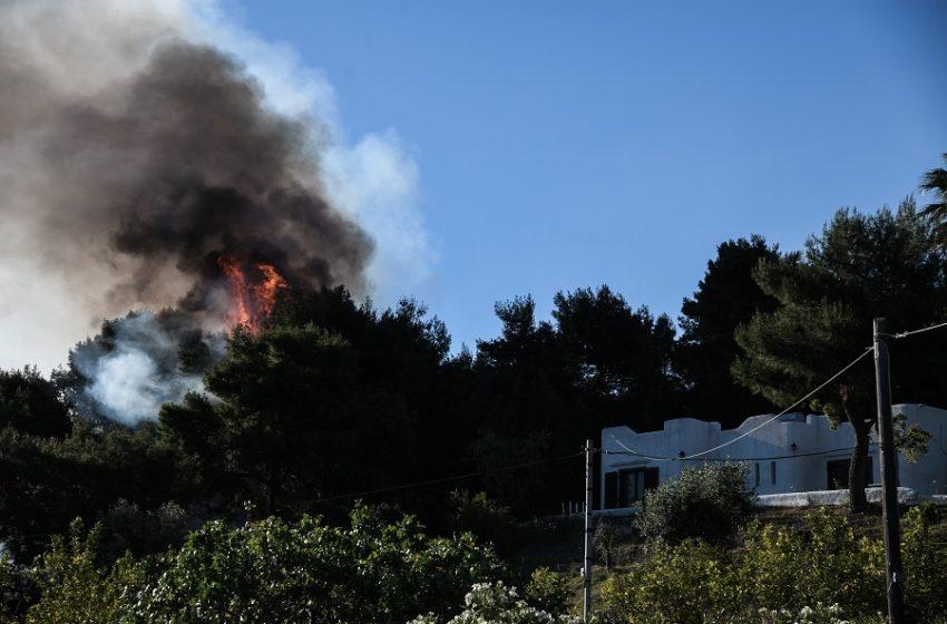 Υπό μερικό έλεγχο η πυρκαγιά στην Κερατέα