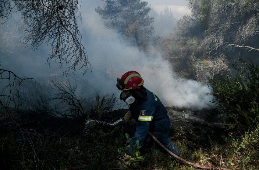 Φθιώτιδα: Φωτιά απειλεί σπίτια – Διακοπή κυκλοφορίας στην εθνική οδό