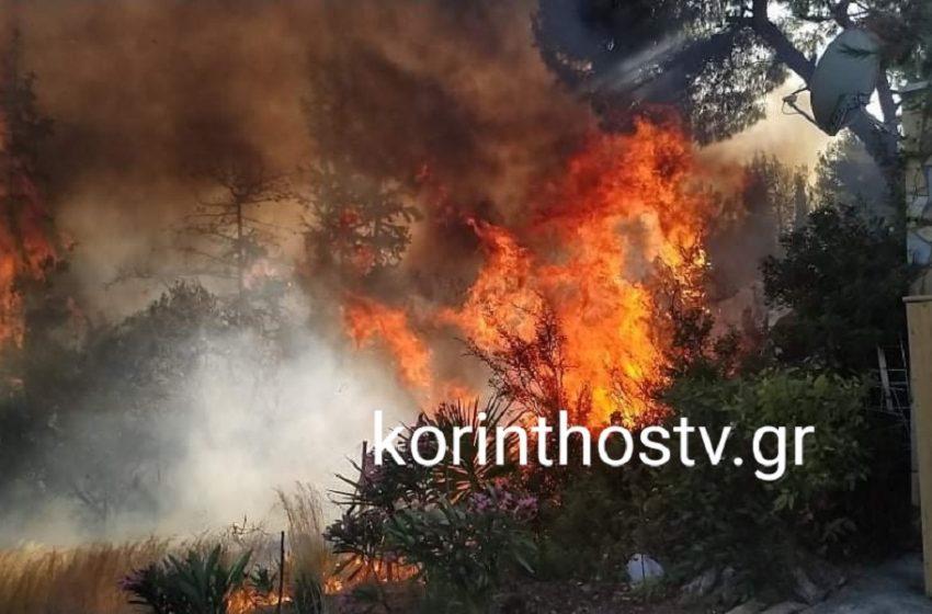 Συναγερμός σε Ίσθμια και Μακρακώμη για δυο μεγάλες φωτιές – Δίπλα σε σπίτια οι φλόγες – Έκλεισαν δρόμοι (vid)