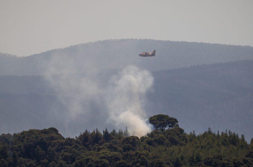 Πυρκαγιές: Οριοθετείται στην Ηλεία – Σε ύφεση στα Γεράνεια παρά τις αναζωπυρώσεις