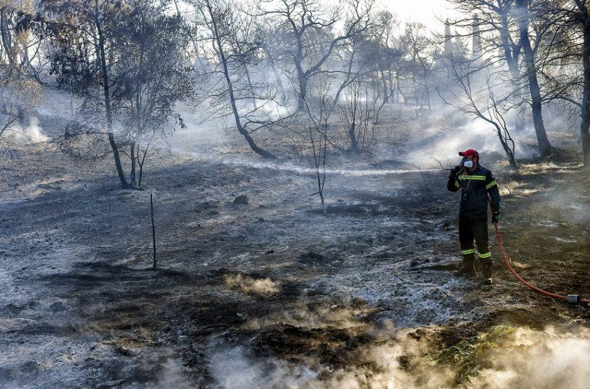 Υπό μερικό έλεγχο η φωτιά στον Ερύμανθο Αχαϊας
