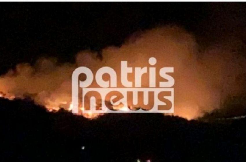 Μεγάλη φωτιά σε δάσος στη Σμέρνα Ηλείας (vid)