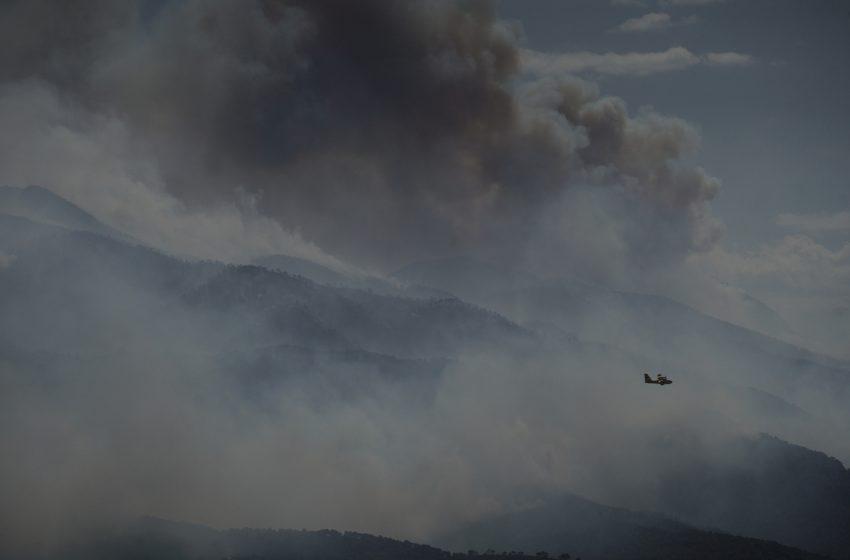 Όλεθρος στα Γεράνεια Όρη: 40.000 στρέμματα στάχτη και η φωτιά συνεχίζει την καταστροφή – Χαρδαλιάς: Έσχατη λύση το 112 (vid, εικόνες)