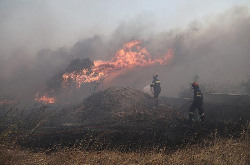 Οριοθετήθηκε η φωτιά στην περιοχή Σμέρνα της Ηλείας