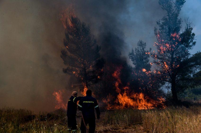 Κρήτη: Μεγάλη φωτιά στα όρια των νομών Ηρακλείου – Λασιθίου