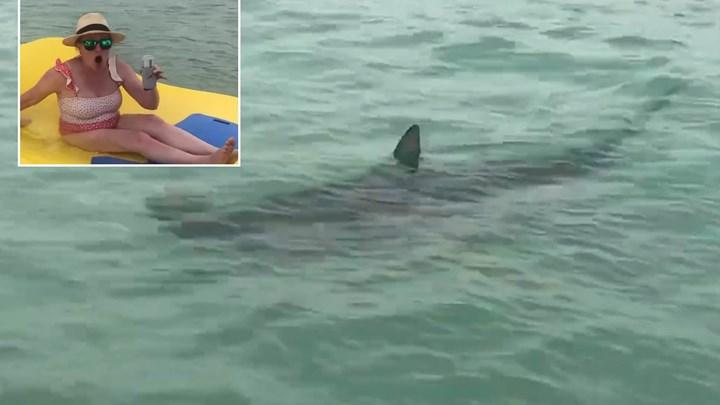Ο απόλυτος τρόμος: Καρχαρίες περικύκλωσαν τρεις γυναίκες (vid)