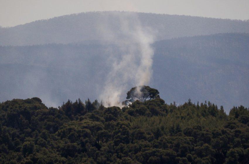 Φωτιά και στην Θήβα: Απειλεί κατοικίες