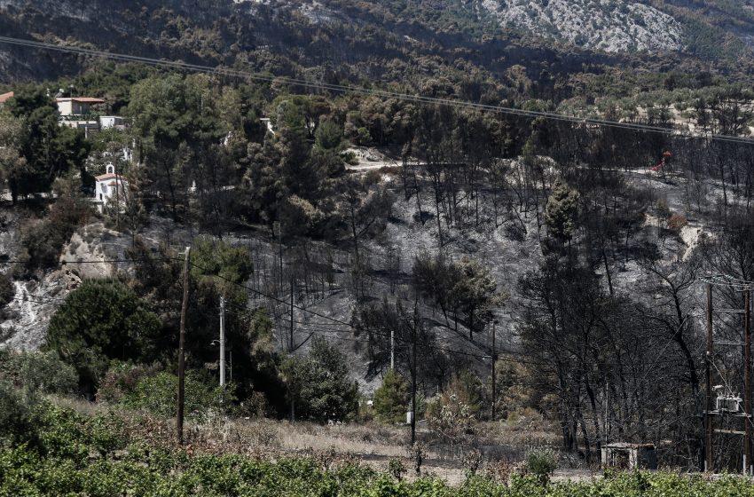Υπό έλεγχο η πυρκαγιά σε υπαίθριο χώρο στο Νέο Βουτζά