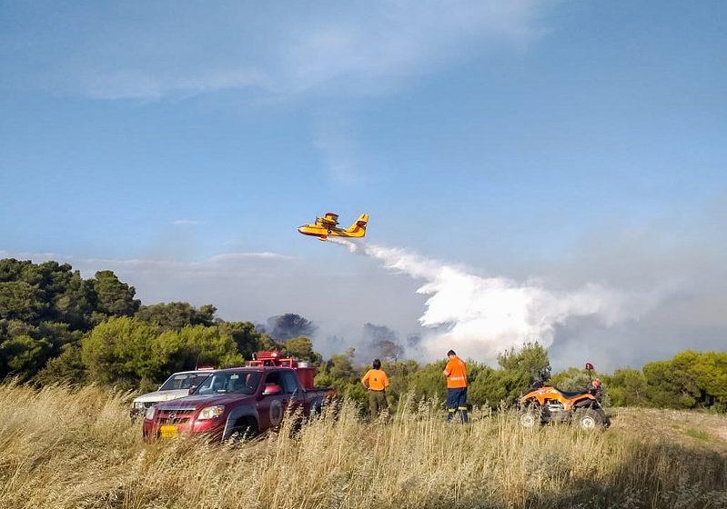 Πυρκαγιά σε δασική έκταση στην Βραυρώνα Αττικής – Δεν απειλείται κατοικημένη περιοχή