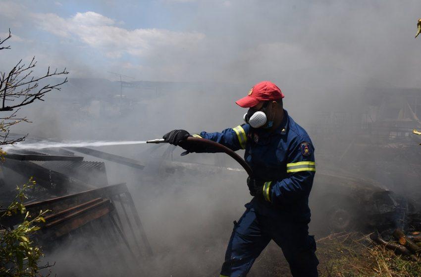 Υπό μερικό έλεγχο η πυρκαγιά σε δασική έκταση στη Βραυρώνα Αττικής