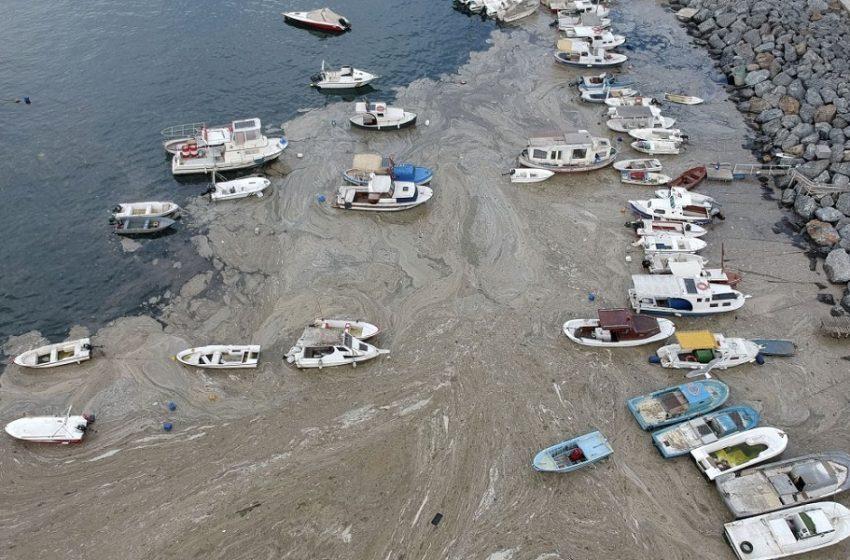 Τουρκία: Πάνω από 4 εκατ. λίτρα βλέννας «καθάρισαν» οι αρχές στη Θάλασσα του Μαρμαρά