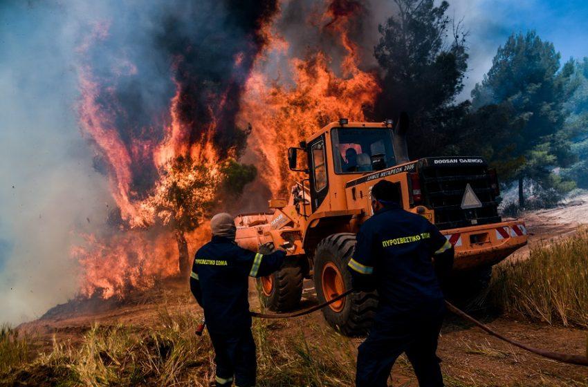 Φωτιά σε δασική έκταση στην Αίγινα