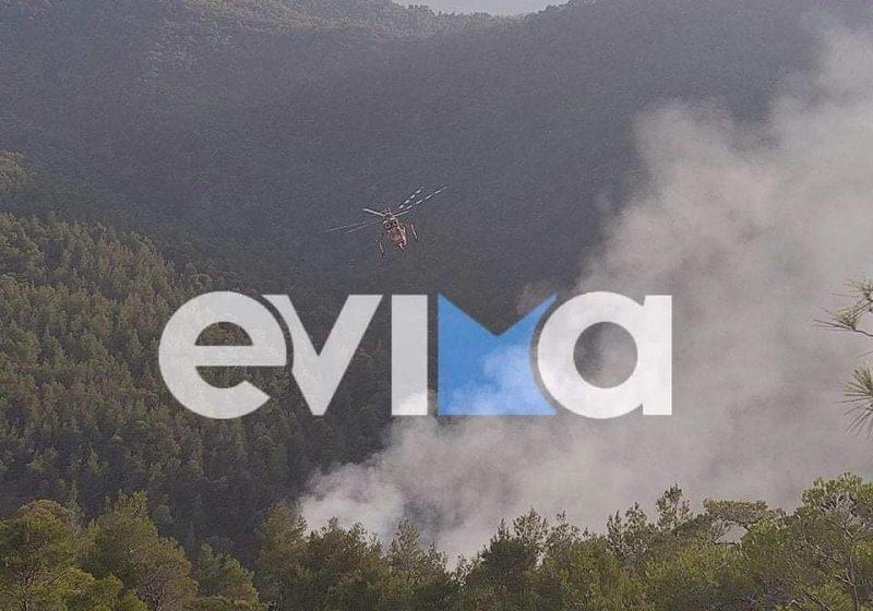 Φωτιά στην Εύβοια – Καίγεται δασική έκταση ανάμεσα στo Πηλί και το Μαντούδι