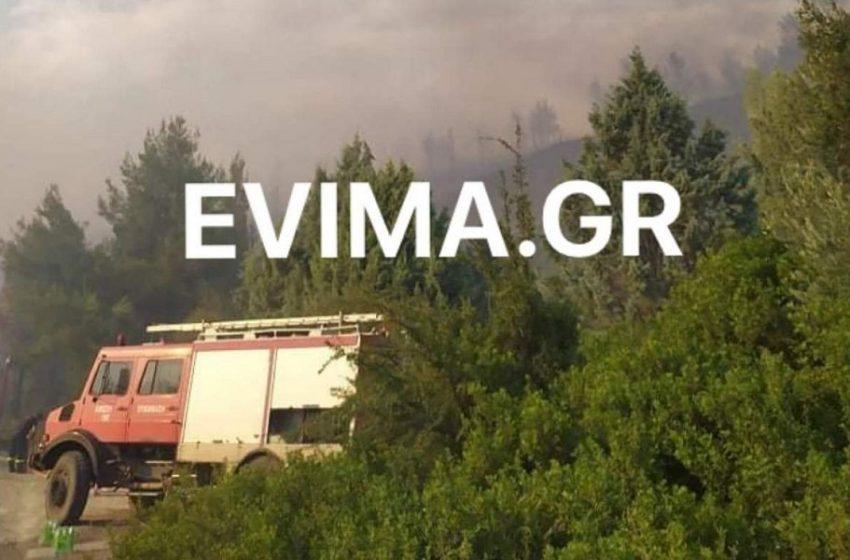 Φωτιά στη Β. Εύβοια – Προκλήθηκε από κεραυνούς