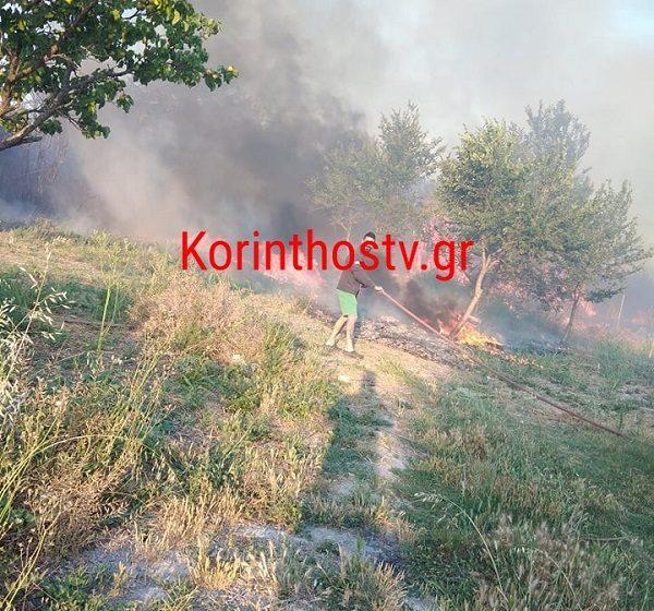 Υπό έλεγχο η φωτιά στο Κιάτο – Σώθηκαν την τελευταία στιγμή τα σπίτια (vid)