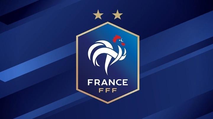 """Γαλλία: """"Κραχ"""" στις μετοχές των καναλιών, λόγω του αποκλεισμού της Εθνικής"""