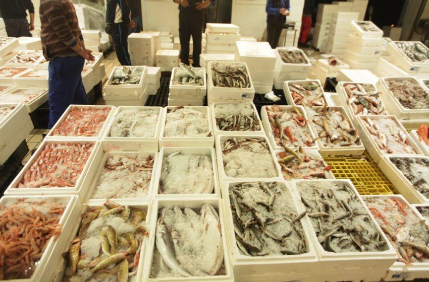 Κατασχέθηκαν 535 κιλά ψάρια στην ιχθυόσκαλα της Θεσσαλονίκης