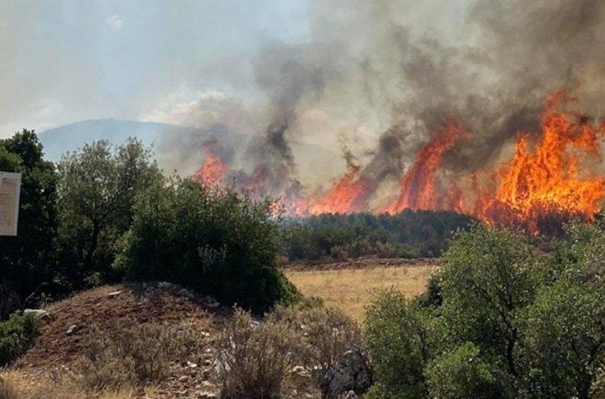 Υψηλός κίνδυνος πυρκαγιάς για 5 περιφέρειες