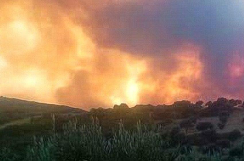 Πολύ υψηλός κίνδυνος για φωτιές την Πέμπτη – Οι περιοχές