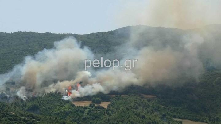 Αχαΐα: Λιποθύμησε πυροσβέστης στη φωτιά