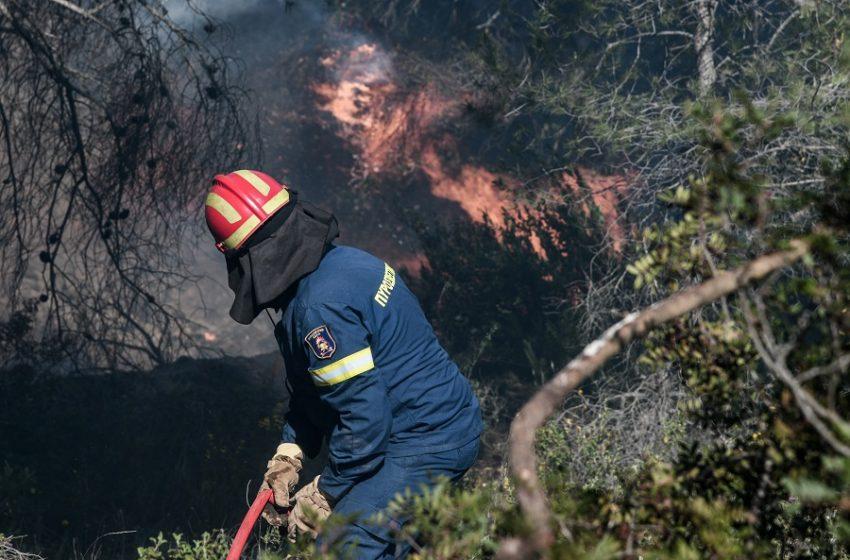 Φωτιά στην Πρέβελη: Μεγάλη κινητοποίηση για την απομάκρυνση κατασκηνωτών