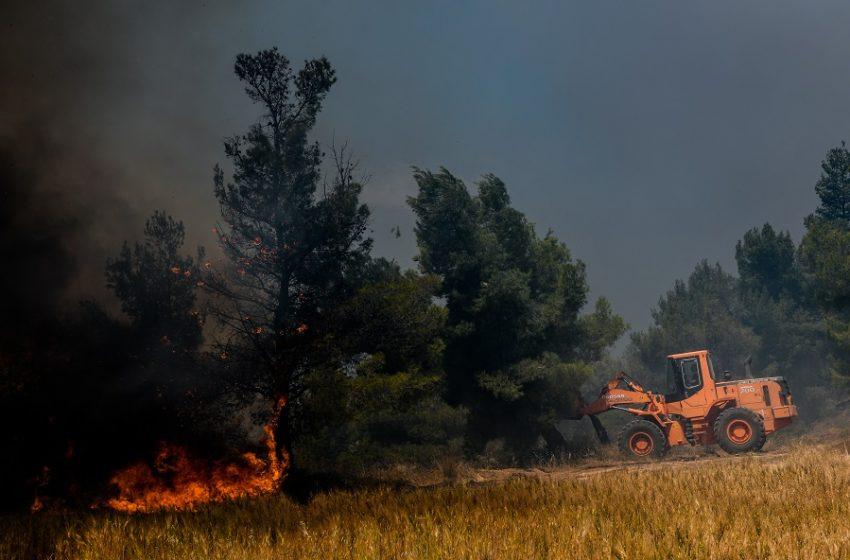 Φωτιά στη Λευκίμη Έβρου -Μεγάλη κινητοποίηση της Πυροσβεστικής