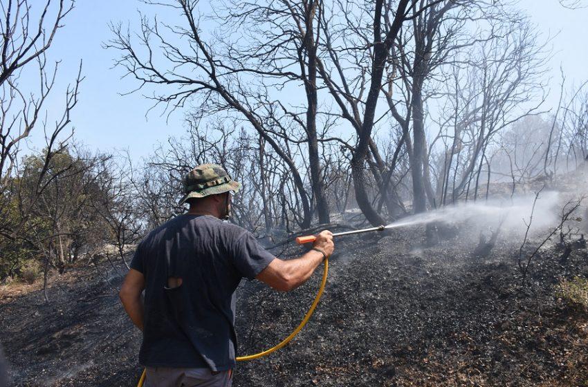 Υπό μερικό έλεγχο η φωτιά στη Χασιά -Αποκαταστάθηκε η κυκλοφορία στην περιοχή