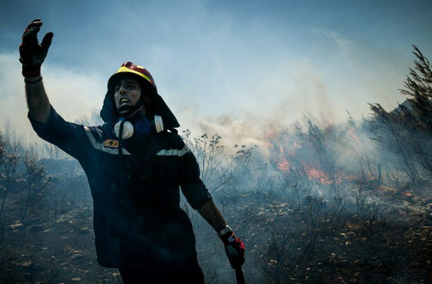 Σε ύφεση οι φωτιές στη Νικήτη Χαλκιδικής και τη Νέα Ζίχνη Σερρών