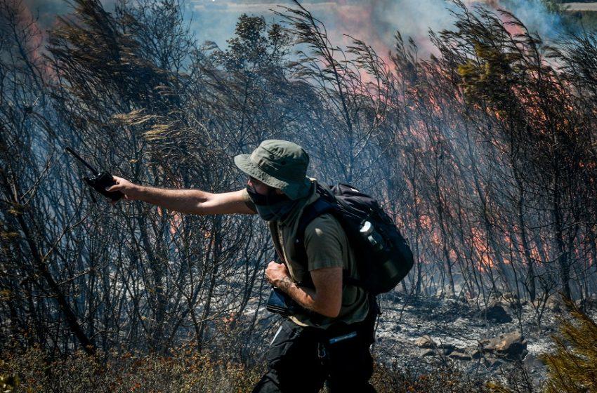 Πυρκαγιά στη Χασιά – Δεν απειλούνται προς το παρόν σπίτια