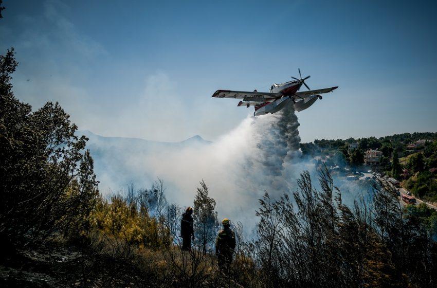 Υπό έλεγχο η πυρκαγιά στα Στύρα Ευβοίας