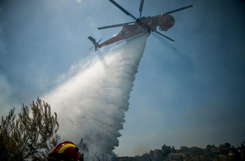 Χαρδαλιάς: Σε κλοιό 51 πυρκαγιών βρέθηκε η χώρα-Καλύτερη η κατάσταση στο Βαρνάβα