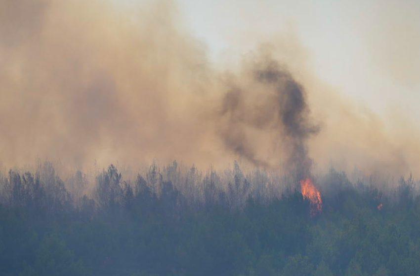 Φωτιά στο δάσος της Πρίνας στο Λασίθι
