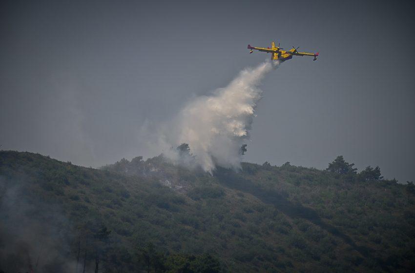 Υψηλός κίνδυνος φωτιάς σε Μεσσηνία, Λακωνία, Κύθηρα και Χανιά το Σάββατο