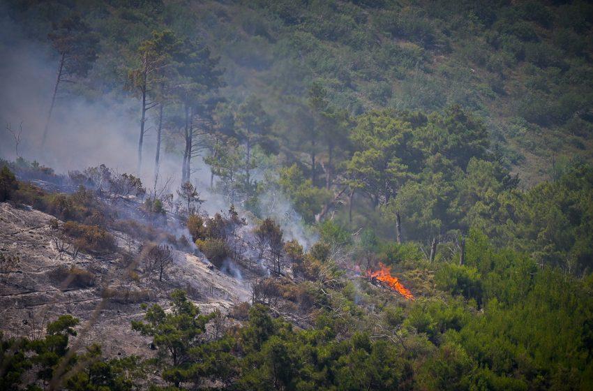 Φωτιά στο Ωραιόκαστρο: Ενισχύονται οι δυνάμεις της πυροσβεστικής