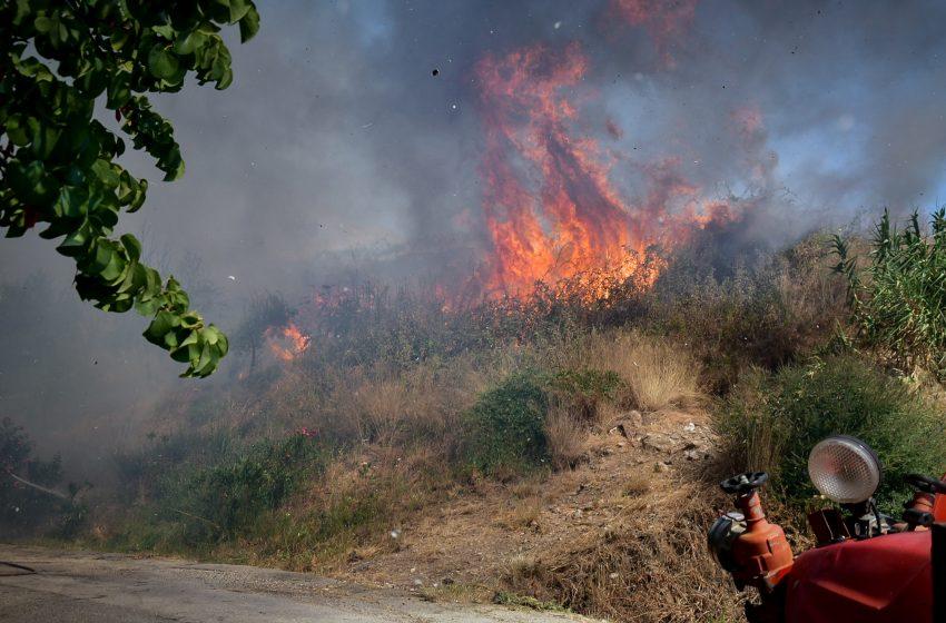 Αχαΐα-πυρκαγιά: Ενεργοποίηση του 112 για άμεση εκκένωση της ευρύτερης περιοχής της Πτέρης