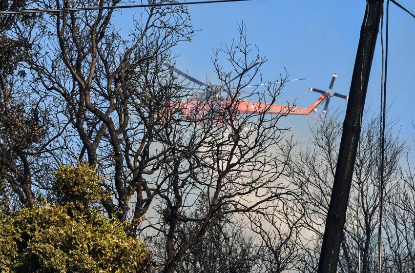 Αγρίνιο: Πυρκαγιά σε δασική έκταση στην περιοχή Θυρίου της Αιτωλοακαρνανίας