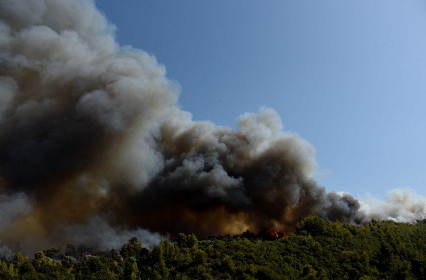 ΚΙΝΑΛ: Μεγάλες οι ευθύνες της κυβέρνησης για τις φωτιές