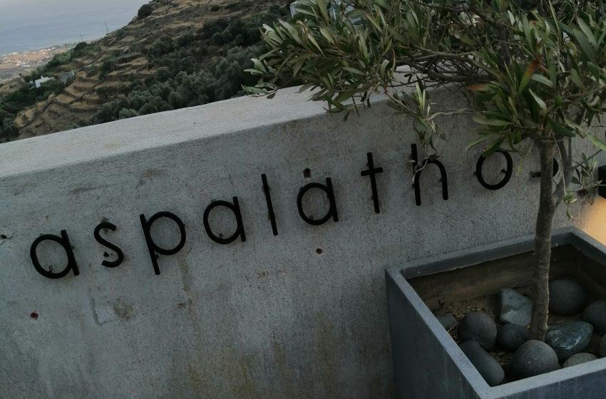 """""""Ασπάλαθος"""": Μια κατοικία στην Τήνο, με την υπογραφή του αρχιτέκτονα Αριστείδη Ντάλα, μετατρέπεται σε χώρο Τέχνης…"""