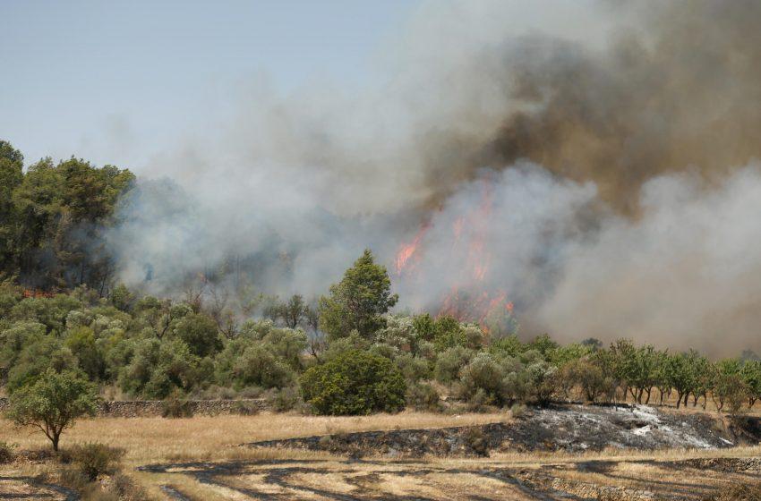 Πυρκαγιά καίει φυσικό πάρκο στην Καταλονία – 350 άνθρωποι εγκατέλειψαν τις εστίες τους