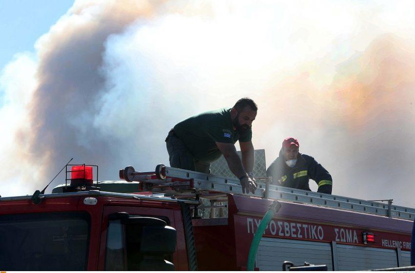 Φωτιά στη Χαλκιδική – Δεν απειλούνται σπίτια