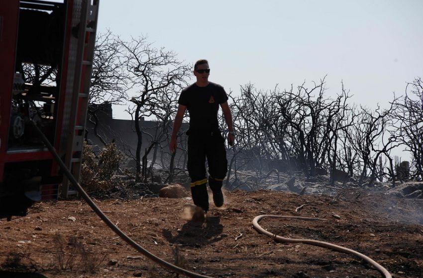 Οριοθετήθηκε η φωτιά στην Ανάβυσσο – Απομακρύνθηκαν κάτοικοι από το Καταφύγι