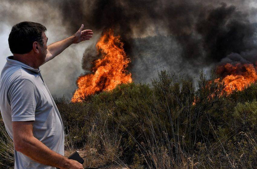 Αντιπεριφερειάρχης Πολιτικής Προστασίας: Υπάρχει μεγάλο μέτωπο από την πλευρά της Μαλακάσας και από το Κρυονέρι