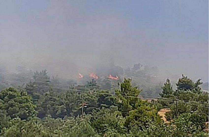 Μεγάλες φωτιές σε Κεφαλονιά-Ωρωπό – Συναγερμός στην Πυροσβεστική