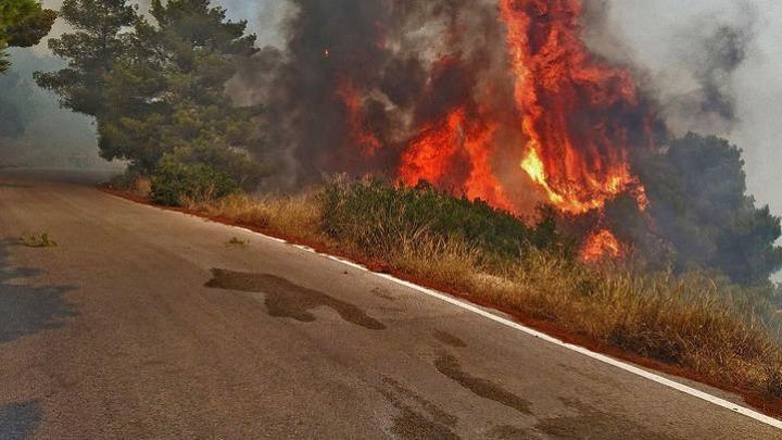 Φωτιά σε εξέλιξη στη Χιόνα Αχαΐας