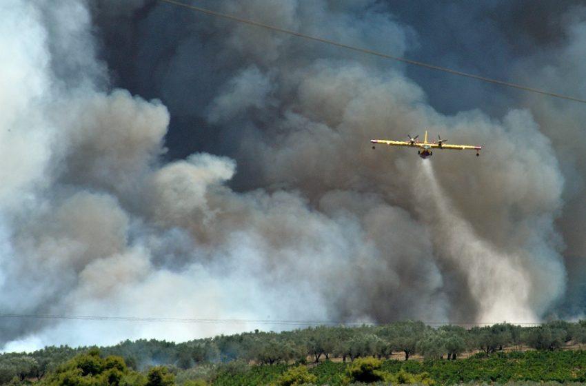 Νέα φωτιά στην Πάτρα – Εκκένωση σπιτιών και επιχειρήσεων στον Προφήτη Ηλία