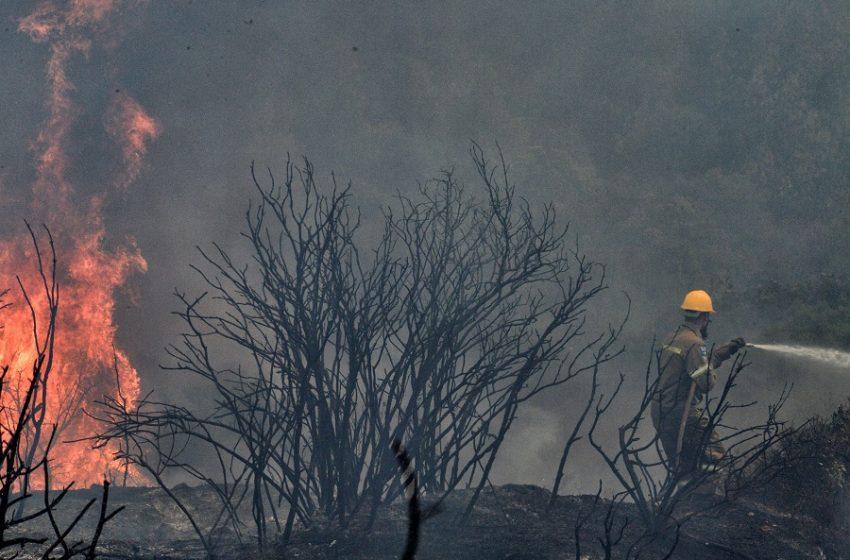 Φωτιά στη Ζήρια: Συνέλαβαν άνδρα για εμπρησμό από αμέλεια