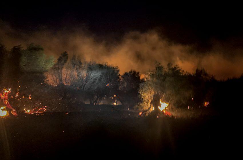Κεφαλονιά: Σε εξέλιξη τα πύρινα μέτωπα – Ολονύχτια μάχη- Εκκενώθηκαν Αγία Ειρήνη και Καπανδρίτι
