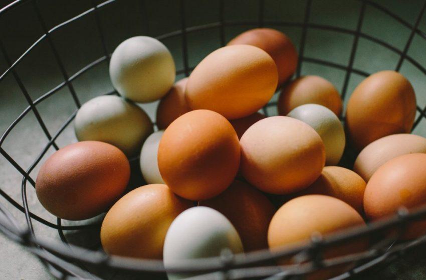 Ανακλήθηκαν 34,5 τόνοι κοτόπουλων και χιλιάδες βιολογικά αυγά